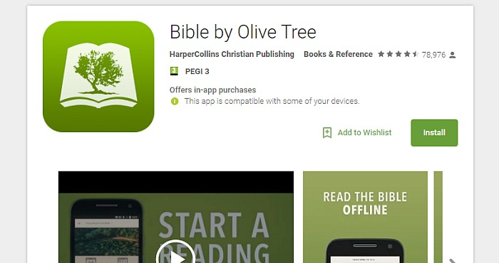 Bible-Olive-Tree